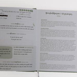 voorbeeldpagina journal